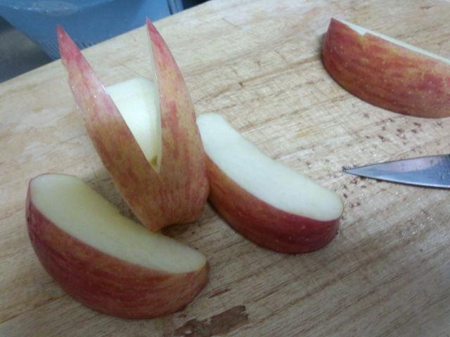 今日のベル飯…りんご…とフィラリア予防!!