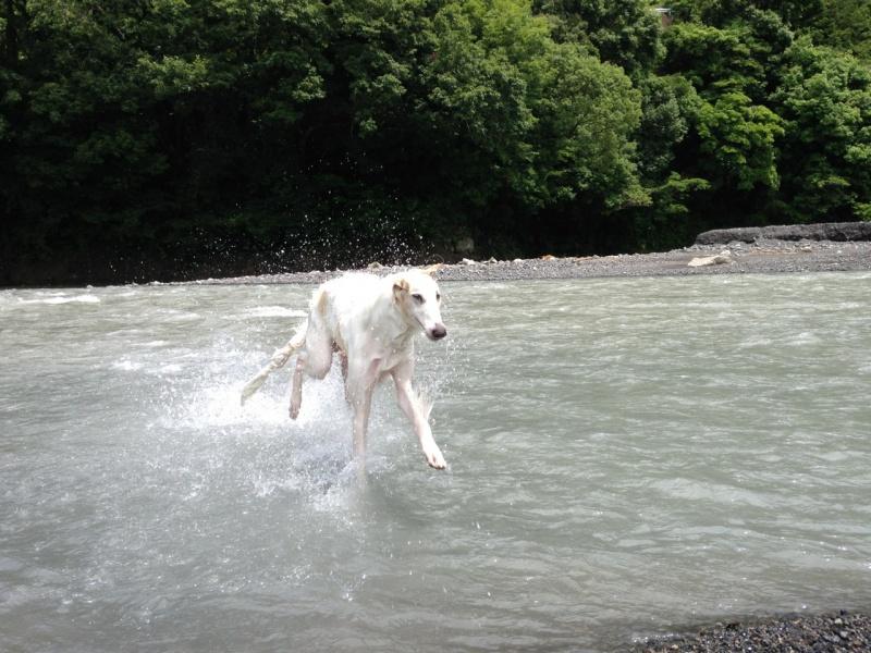 川開き~♪